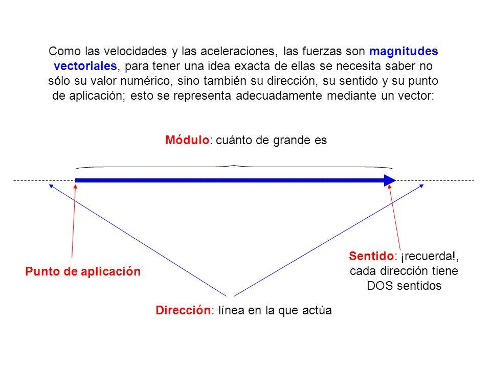 Como las velocidades y las aceleraciones, las fuerzas son magnitudes vectoriales, para tener una idea exacta de ellas se necesita saber no sólo su val