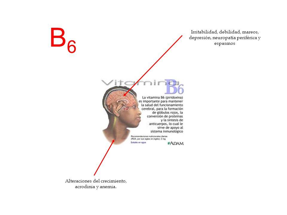 B6B6 Irritabilidad, debilidad, mareos, depresión, neuropatía periférica y espasmos Alteraciones del crecimiento, acrodinia y anemia.