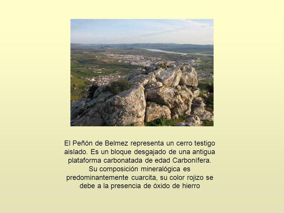 El Peñón de Belmez representa un cerro testigo aislado. Es un bloque desgajado de una antigua plataforma carbonatada de edad Carbonífera. Su composici