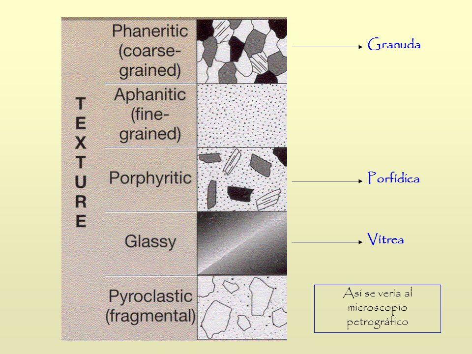 Granuda Porfídica Vítrea Así se vería al microscopio petrográfico