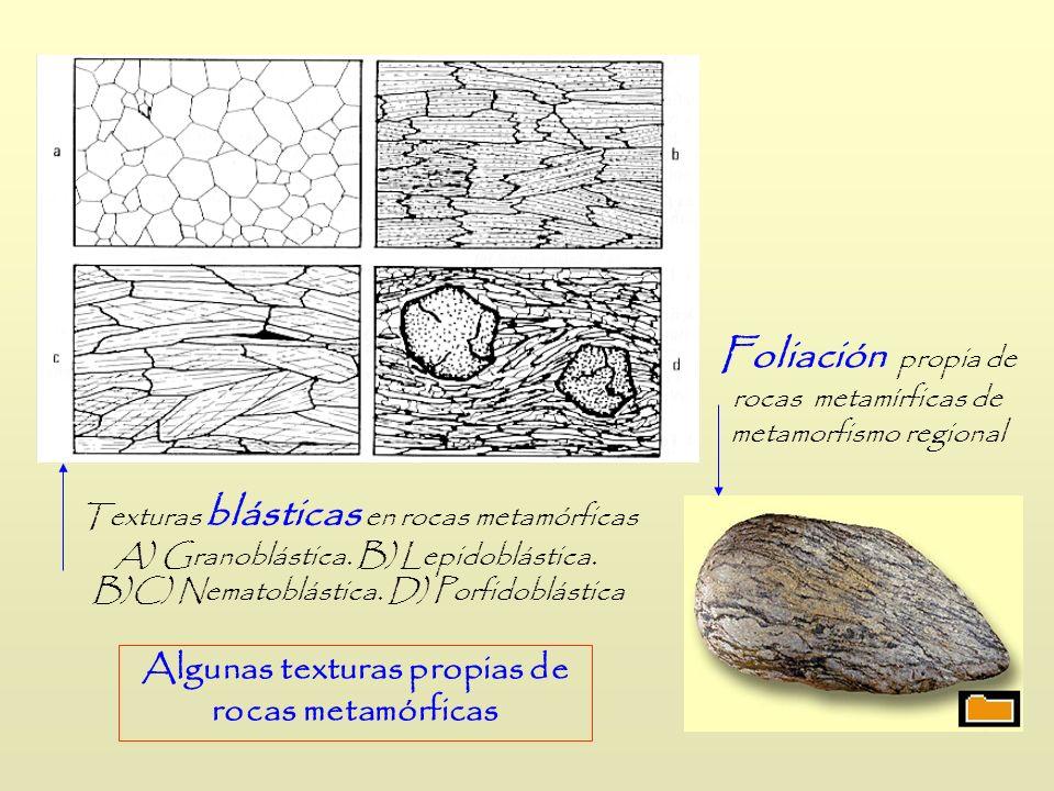Texturas blásticas en rocas metamórficas A) Granoblástica. B) Lepidoblástica. B)C) Nematoblástica. D) Porfidoblástica Foliación propia de rocas metamí