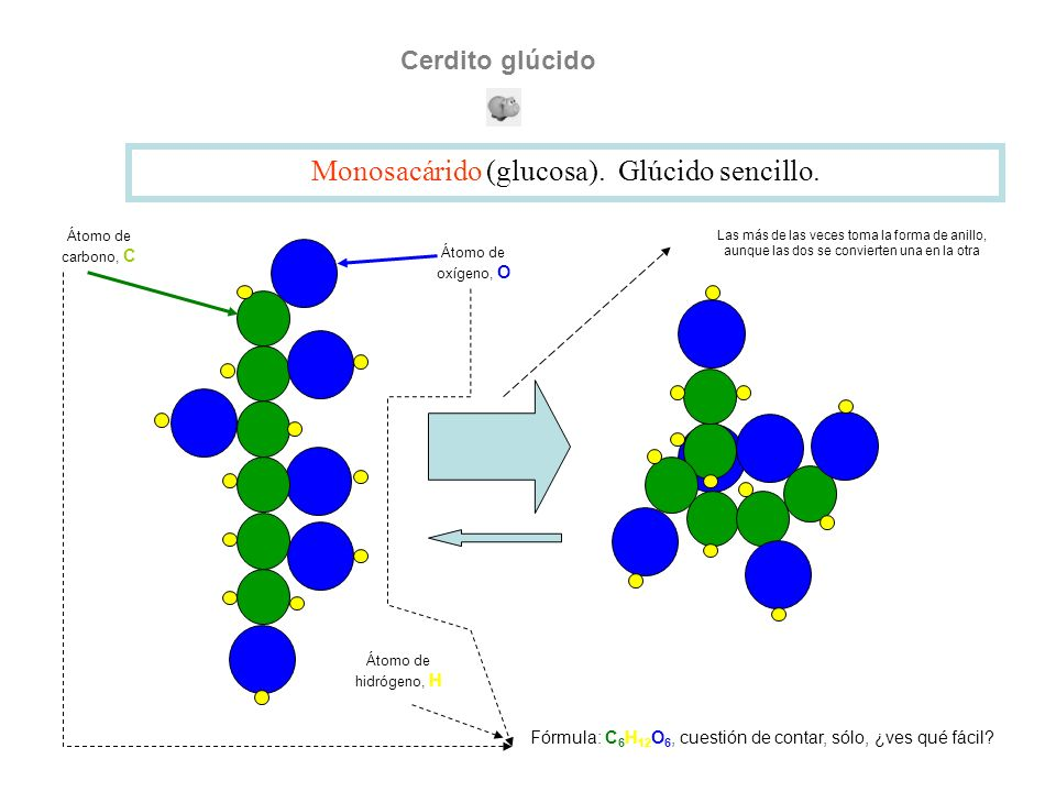 Monosacárido (glucosa). Glúcido sencillo.