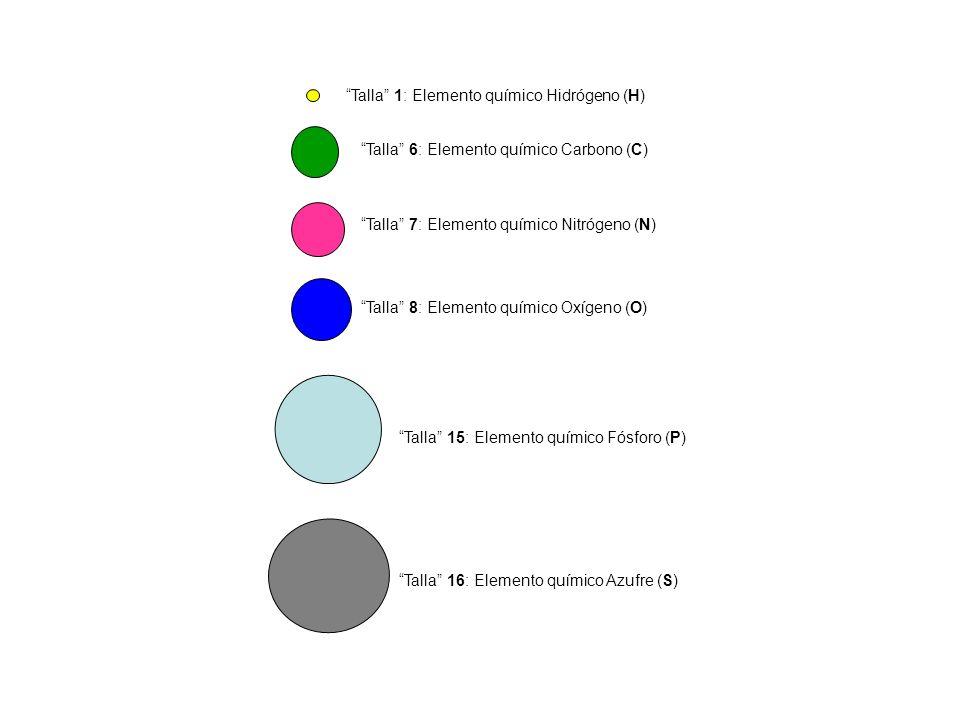 Talla 1: Elemento químico Hidrógeno (H) Talla 6: Elemento químico Carbono (C) Talla 7: Elemento químico Nitrógeno (N) Talla 8: Elemento químico Oxígen