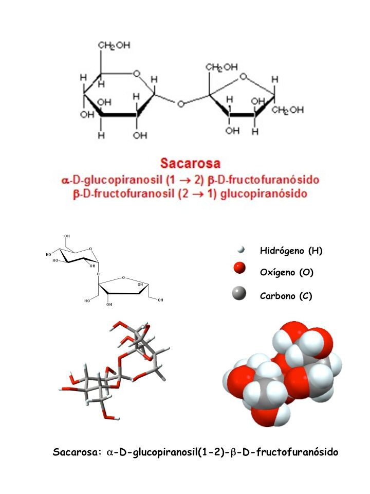 http://www.bioquimicaqui 11601.ucv.cl/unidades/hde c/HdeC3.html http://educacionquimica.fi les.wordpress.com/2011/0 6/sacarosa.jpg