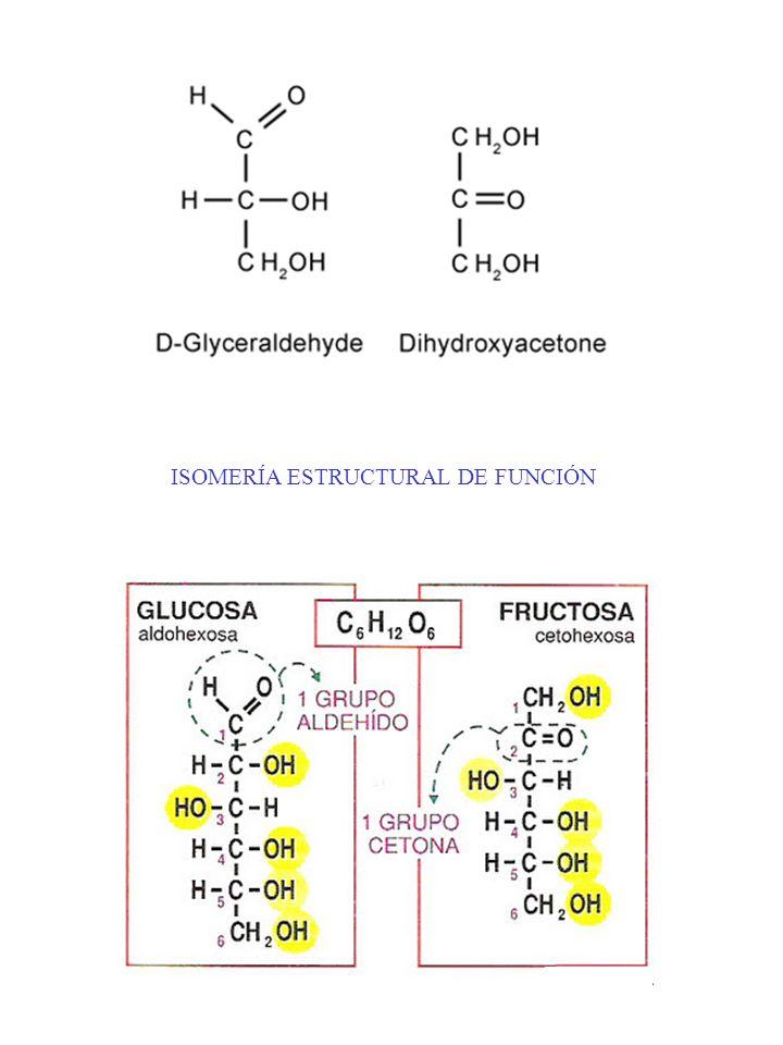 http:// tiempodeexito.com/bioquimica/images/glucosa6.jpg ENANTIOMERÍA