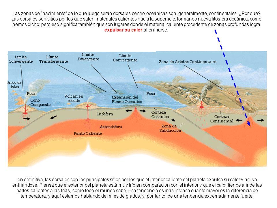 http://upload.wikimedia.org/wikipedia/commons/2/26/Limitesdeplacastect%C3%B3nicas.PNG Las zonas de nacimiento de lo que luego serán dorsales centro-oc