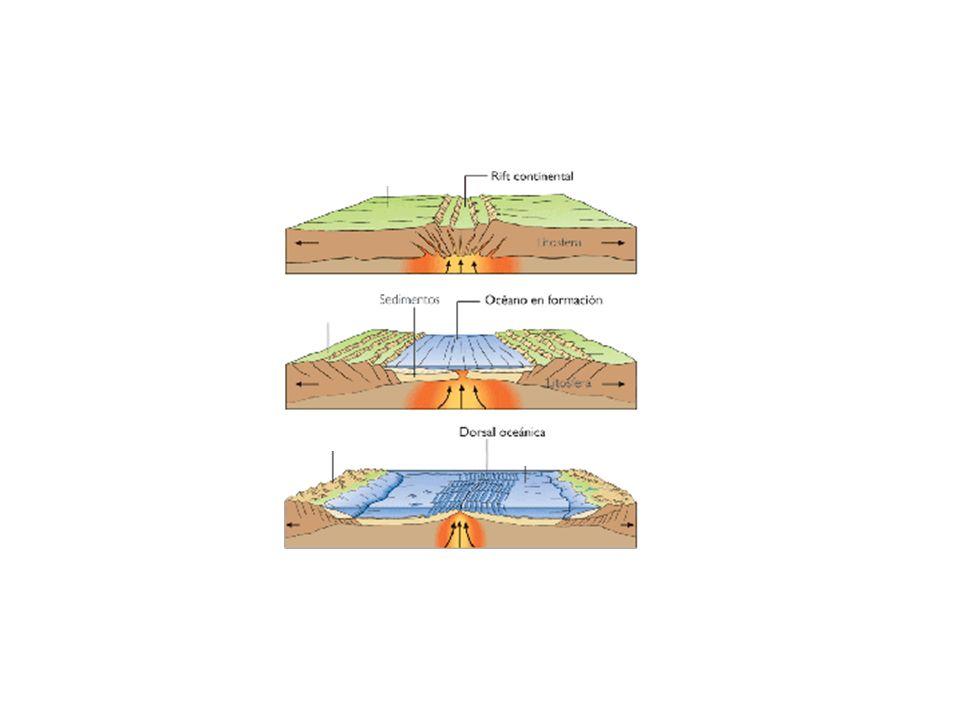 http://www.kalipedia.com/ciencias-tierra-universo/tema/planeta- tierra/graficos-evolucion-limite- divergente.html?x1=20070417klpcnatun_33.Ees&x=200704