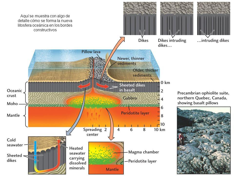 http://hays.outcrop.org/images/rocks/igneous/press4e/figure-05-13.jpg Aquí se muestra con algo de detalle cómo se forma la nueva litosfera oceánica en