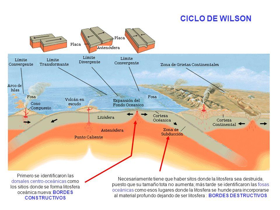 http://upload.wikimedia.org/wikipedia/commons/2/26/Limitesdeplacastect%C3%B3nicas.PNG CICLO DE WILSON Primero se identificaron las dorsales centro-oce