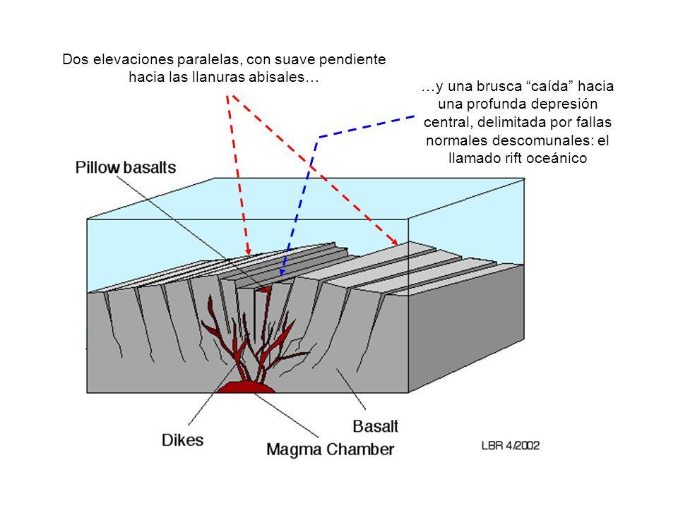 http://www.gly.uga.edu/railsback/1121MORBasic.jpeg Dos elevaciones paralelas, con suave pendiente hacia las llanuras abisales… …y una brusca caída hac