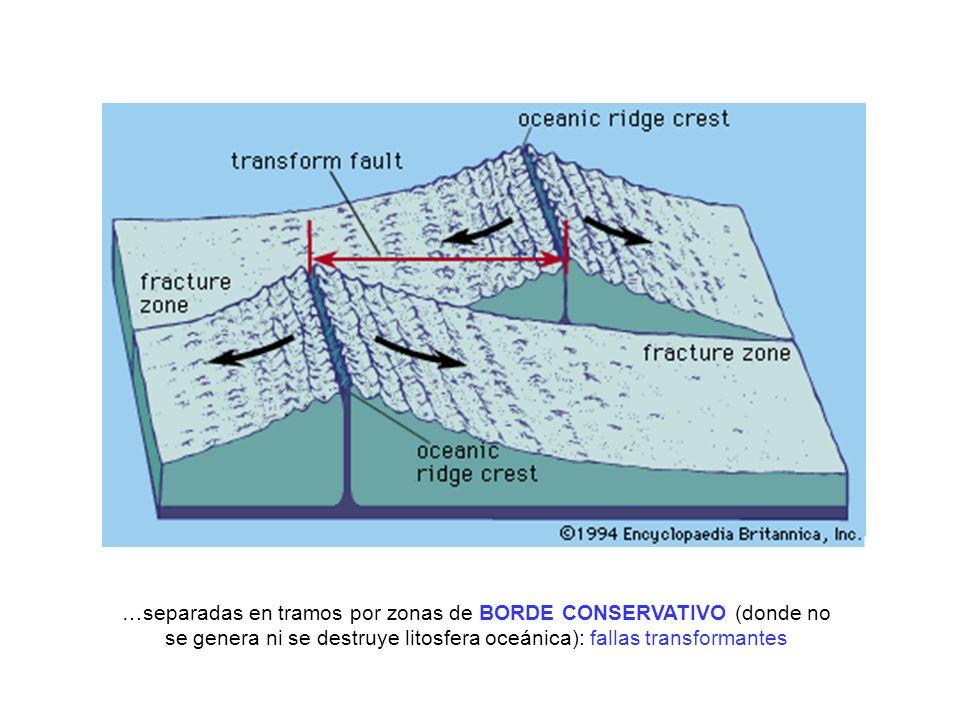…separadas en tramos por zonas de BORDE CONSERVATIVO (donde no se genera ni se destruye litosfera oceánica): fallas transformantes