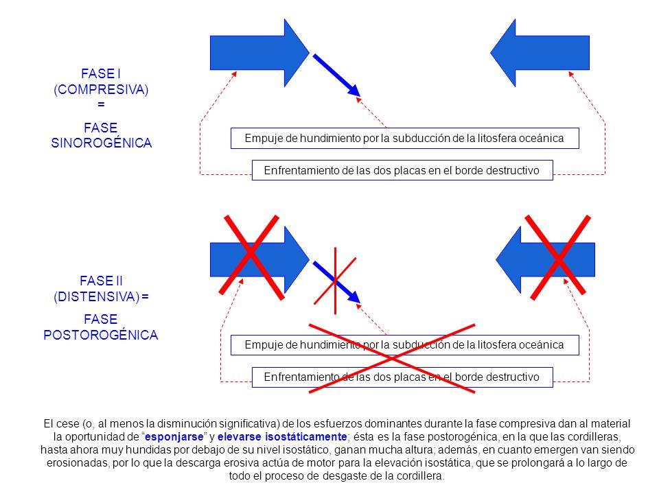 FASE I (COMPRESIVA) = FASE SINOROGÉNICA Enfrentamiento de las dos placas en el borde destructivo Empuje de hundimiento por la subducción de la litosfe