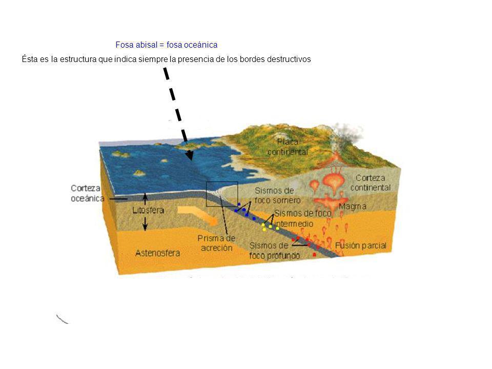 http://elprofedenaturales.files.wordpress.com/2009/10/cont-oceano.jpg Fosa abisal = fosa oceánica Ésta es la estructura que indica siempre la presenci
