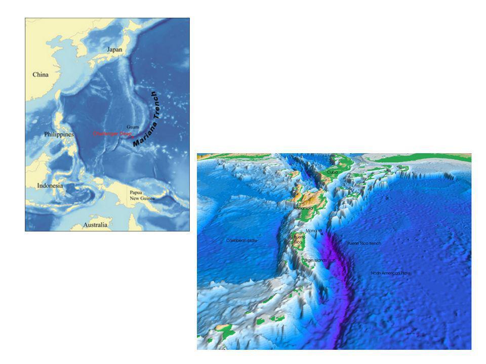 http://pllanos-geografia.blogspot.com/2009/09/2-el- relieve-terrestre.html http://es.wikipedia.org/wiki/Archivo:Atlantic-trench.JPG