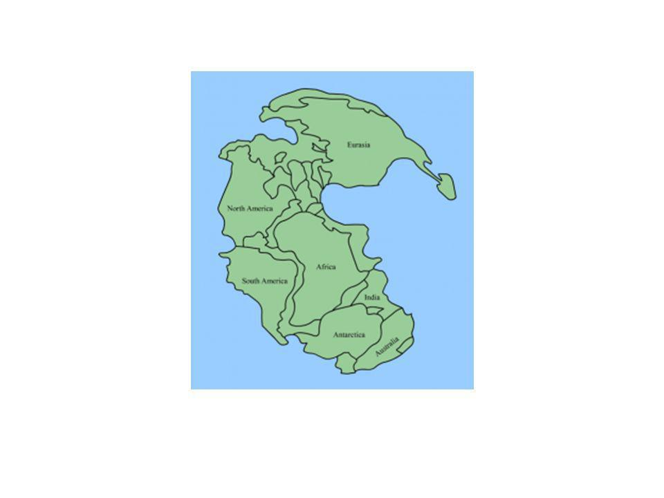http://elprofedenaturales.files.wordpress.com/2009/10/pangea.png?w=266&h=300