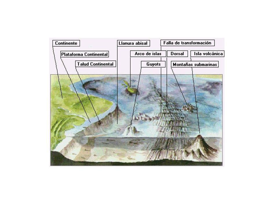 http://atlas.snet.gob.sv/atlas/files/sismos/imagenes/fondoce.jpg