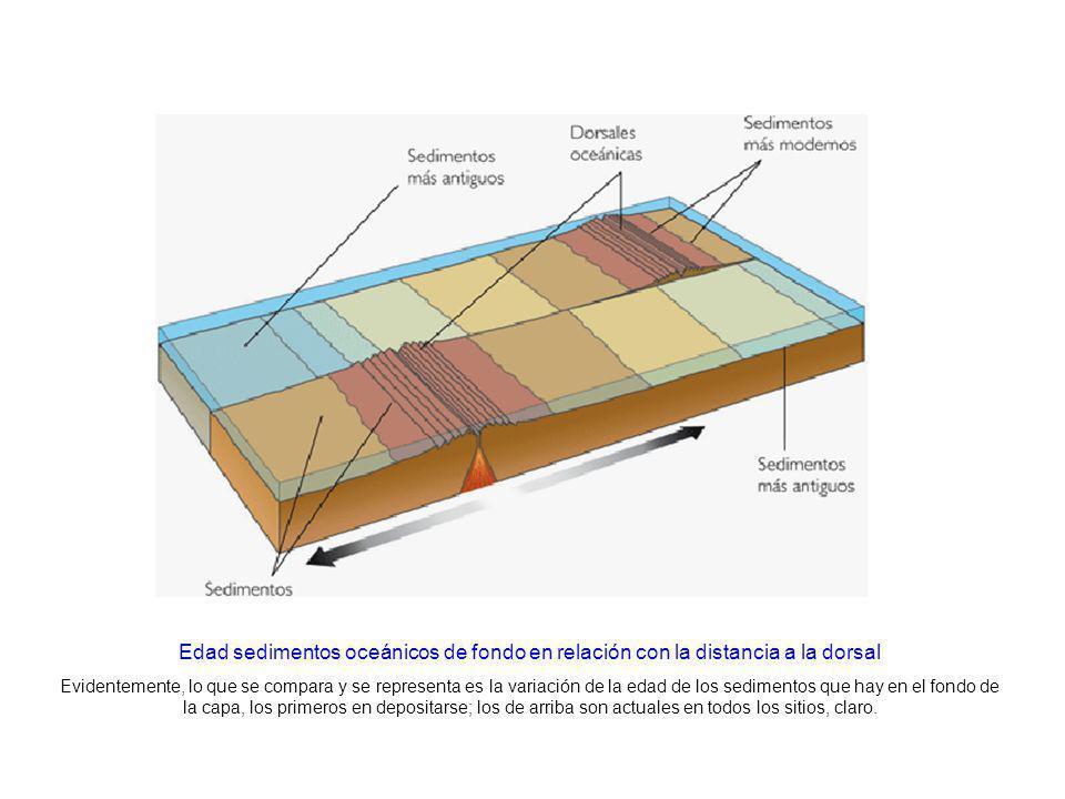 http://www.kalipedia.com/geografia-espana/tema/graficos-sedimentos-fondo- marino.html?x1=20070417klpcnatun_41.Ees&x=20070417klpcnatun_28.Kes Edad sedi