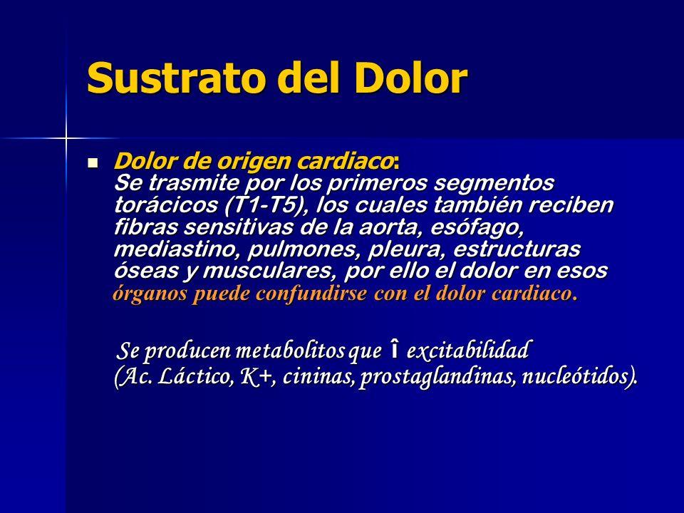 Sustrato del Dolor Dolor de origen cardiaco: Se trasmite por los primeros segmentos torácicos (T1-T5), los cuales también reciben fibras sensitivas de