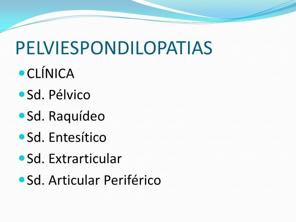 PELVIESPONDILOPATIAS CLÍNICA Sd. Pélvico Sd. Raquídeo Sd. Entesítico Sd. Extrarticular Sd. Articular Periférico