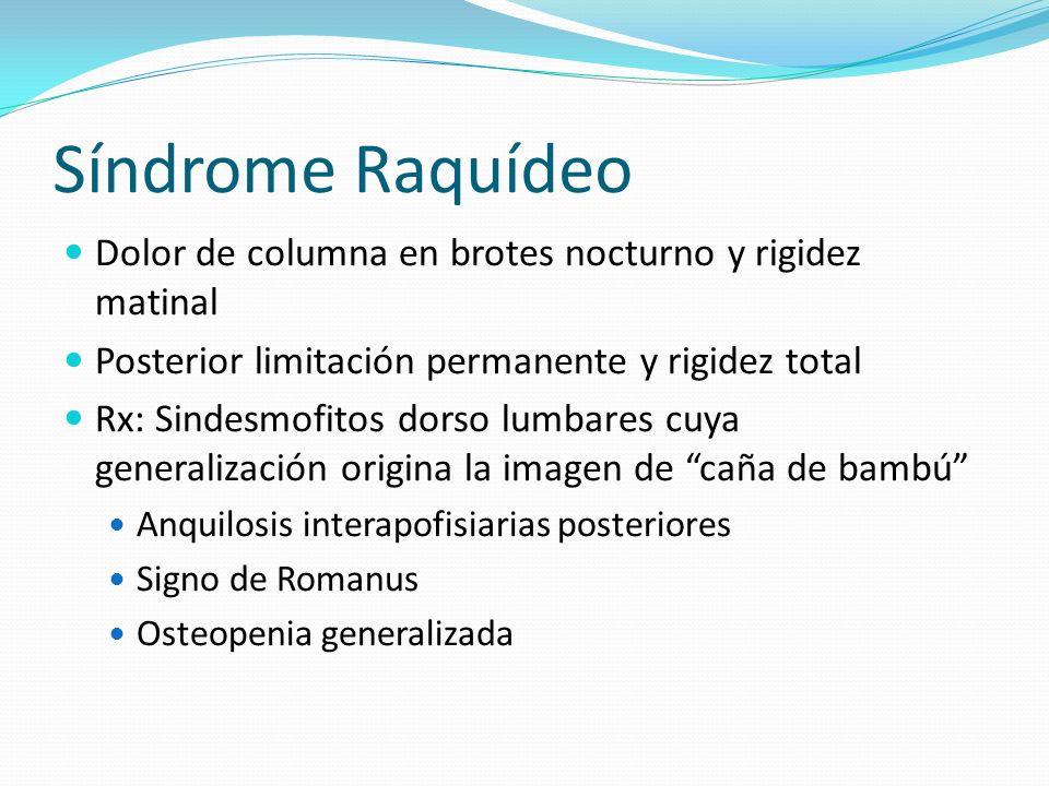 Síndrome Raquídeo Dolor de columna en brotes nocturno y rigidez matinal Posterior limitación permanente y rigidez total Rx: Sindesmofitos dorso lumbar