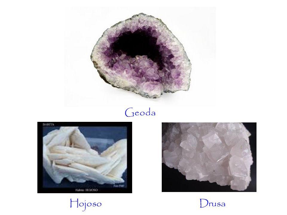 Geoda DrusaHojoso