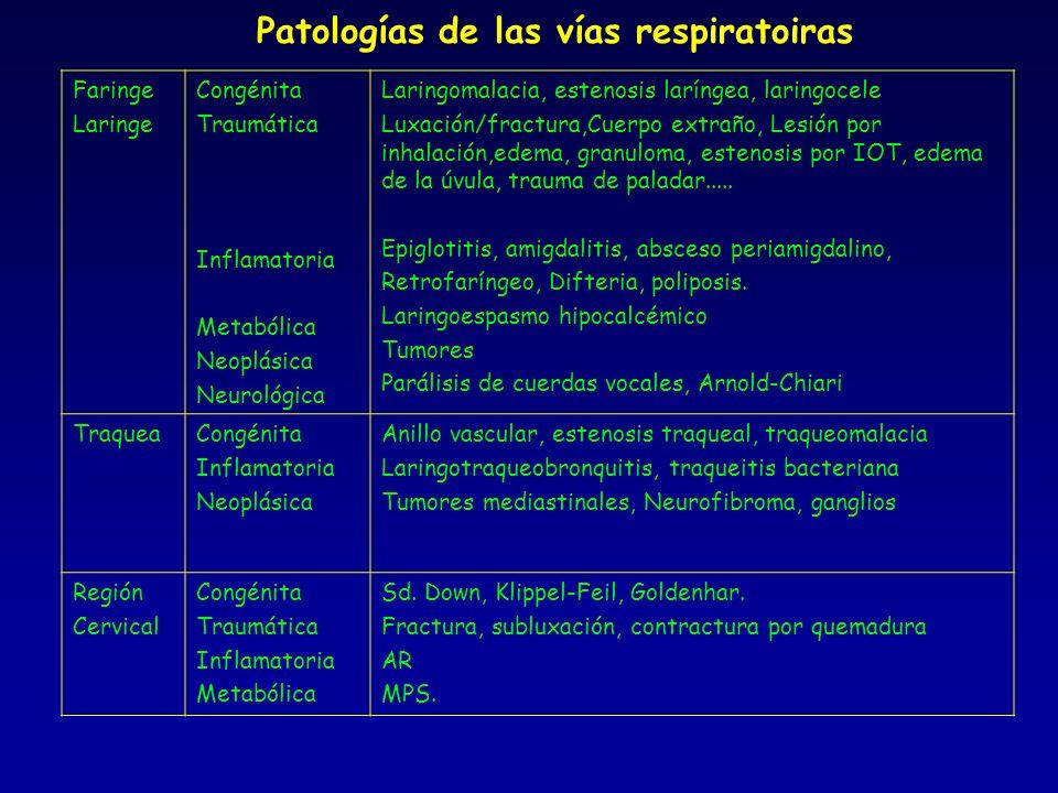 Patologías de las vías respiratoiras Faringe Laringe Congénita Traumática Inflamatoria Metabólica Neoplásica Neurológica Laringomalacia, estenosis lar