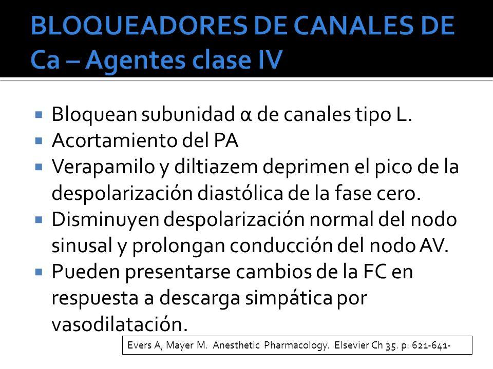 Bloquean subunidad α de canales tipo L.
