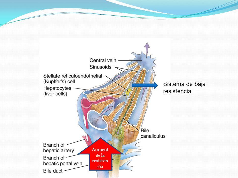 Sistema de baja resistencia Aument de la resisten cia