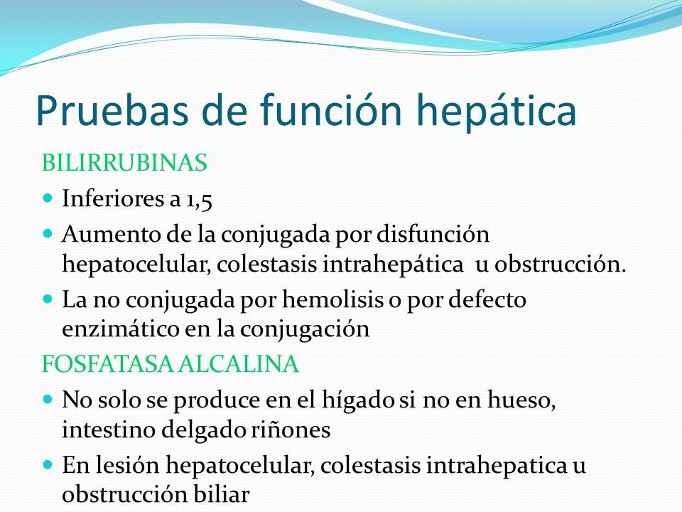 Pruebas de función hepática BILIRRUBINAS Inferiores a 1,5 Aumento de la conjugada por disfunción hepatocelular, colestasis intrahepática u obstrucción