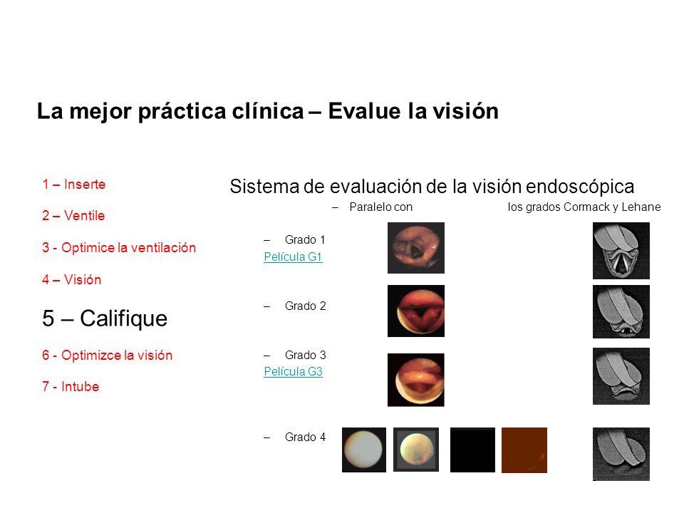 Sistema de evaluación de la visión endoscópica –Paralelo con los grados Cormack y Lehane –Grado 1 Película G1 –Grado 2 –Grado 3 Película G3 –Grado 4 L