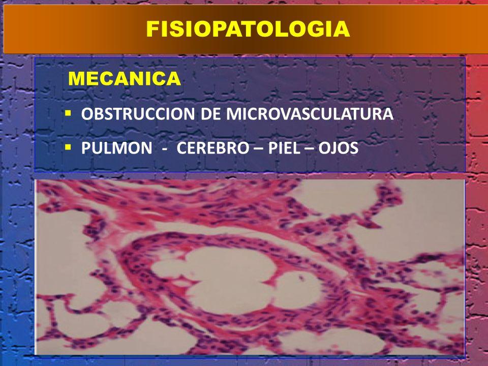 MECANICA OBSTRUCCION DE MICROVASCULATURA PULMON - CEREBRO – PIEL – OJOS FISIOPATOLOGIA BIOQUMICA HIDRÓLISIS X LIPASA RADICALES LIBRES REACCION INFLAMA