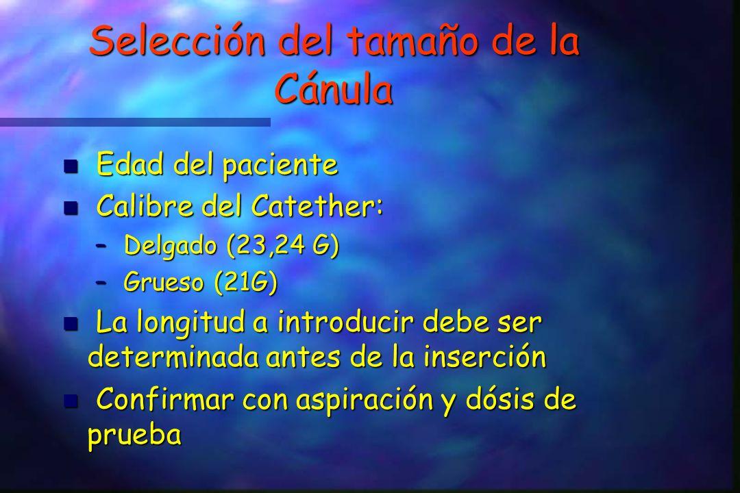 Selección del tamaño de la Cánula Edad del paciente Edad del paciente n Calibre del Catether: – Delgado (23,24 G) – Grueso (21G) n La longitud a introducir debe ser determinada antes de la inserción n Confirmar con aspiración y dósis de prueba