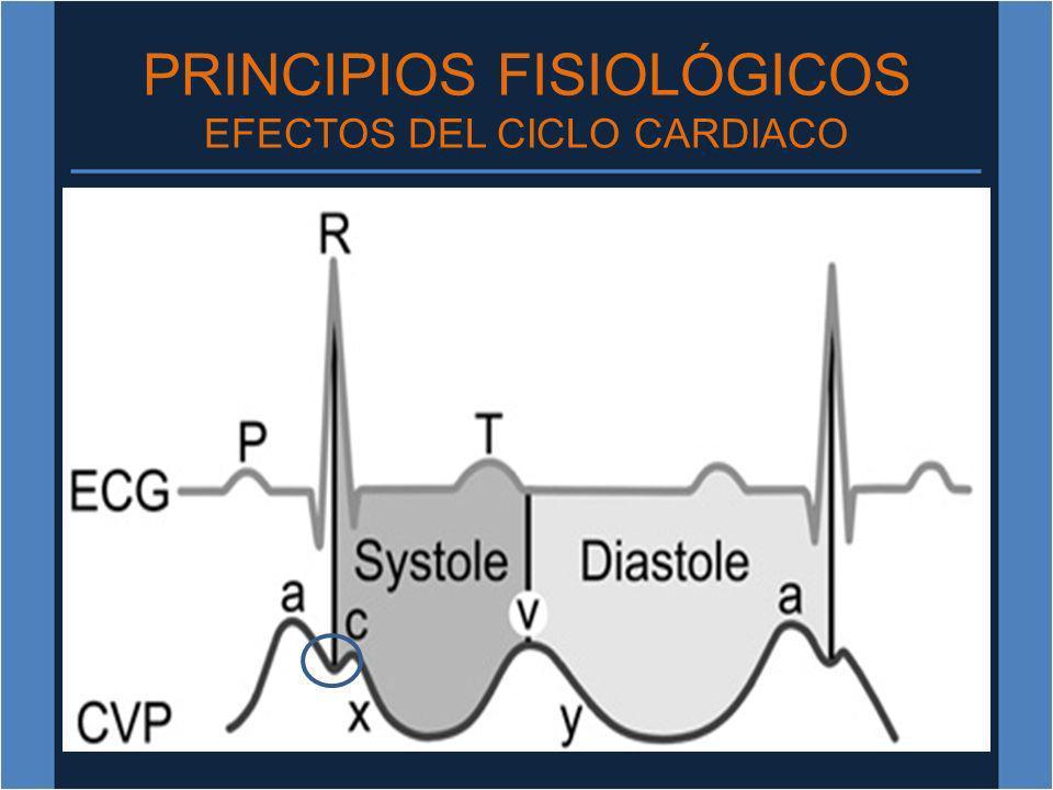 PRINCIPIOS FISIOLÓGICOS EFECTOS DEL CICLO CARDIACO