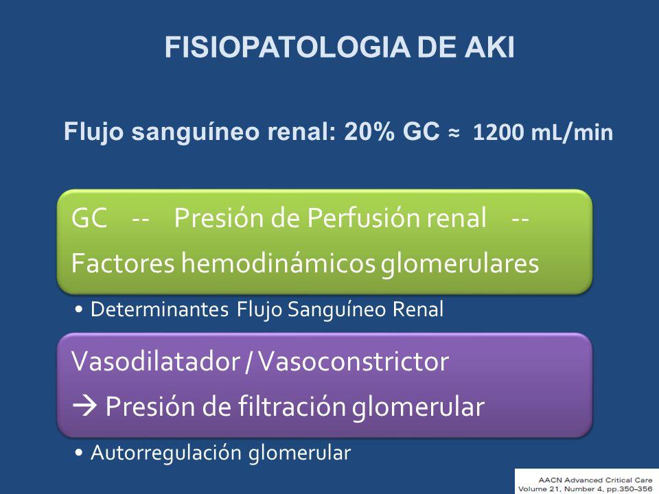 FISIOPATOLOGIA DE AKI Flujo sanguíneo renal: 20% GC 1200 mL/min GC -- Presión de Perfusión renal -- Factores hemodinámicos glomerulares Determinantes