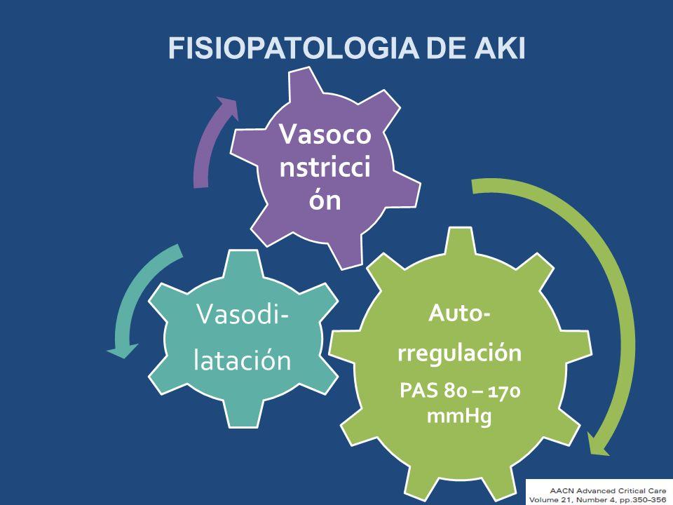 FISIOPATOLOGIA DE AKI Auto- rregulación PAS 80 – 170 mmHg Vasodi- latación Vasoco nstricci ón