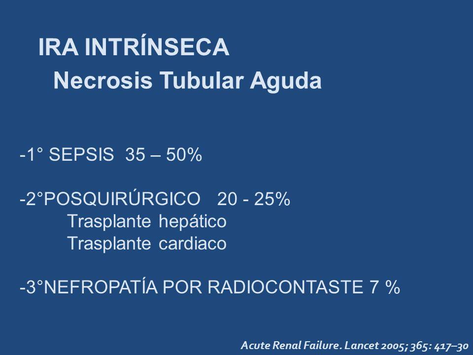 IRA INTRÍNSECA -1° SEPSIS 35 – 50% -2°POSQUIRÚRGICO 20 - 25% Trasplante hepático Trasplante cardiaco -3°NEFROPATÍA POR RADIOCONTASTE 7 % Necrosis Tubu