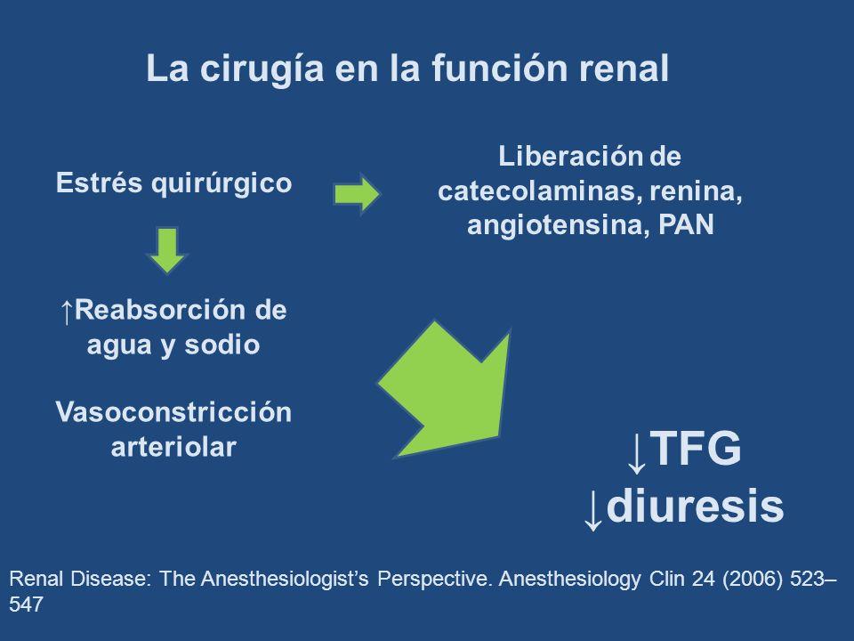 Renal Disease: The Anesthesiologists Perspective. Anesthesiology Clin 24 (2006) 523– 547 Estrés quirúrgico Liberación de catecolaminas, renina, angiot