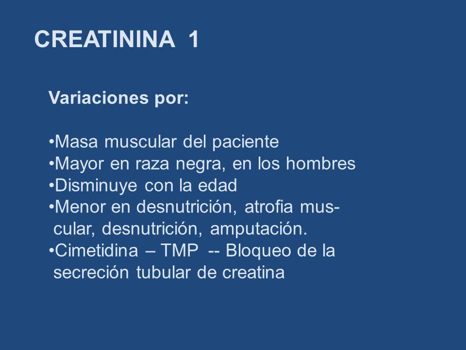 CREATININA 1 Variaciones por: Masa muscular del paciente Mayor en raza negra, en los hombres Disminuye con la edad Menor en desnutrición, atrofia mus-