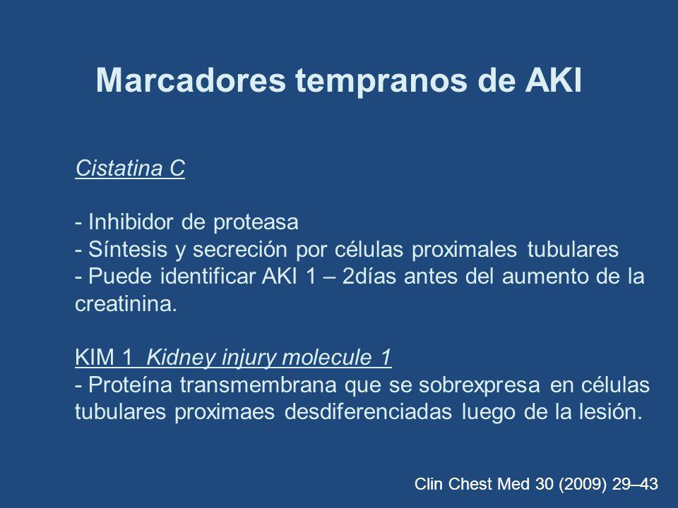 Marcadores tempranos de AKI Cistatina C - Inhibidor de proteasa - Síntesis y secreción por células proximales tubulares - Puede identificar AKI 1 – 2d