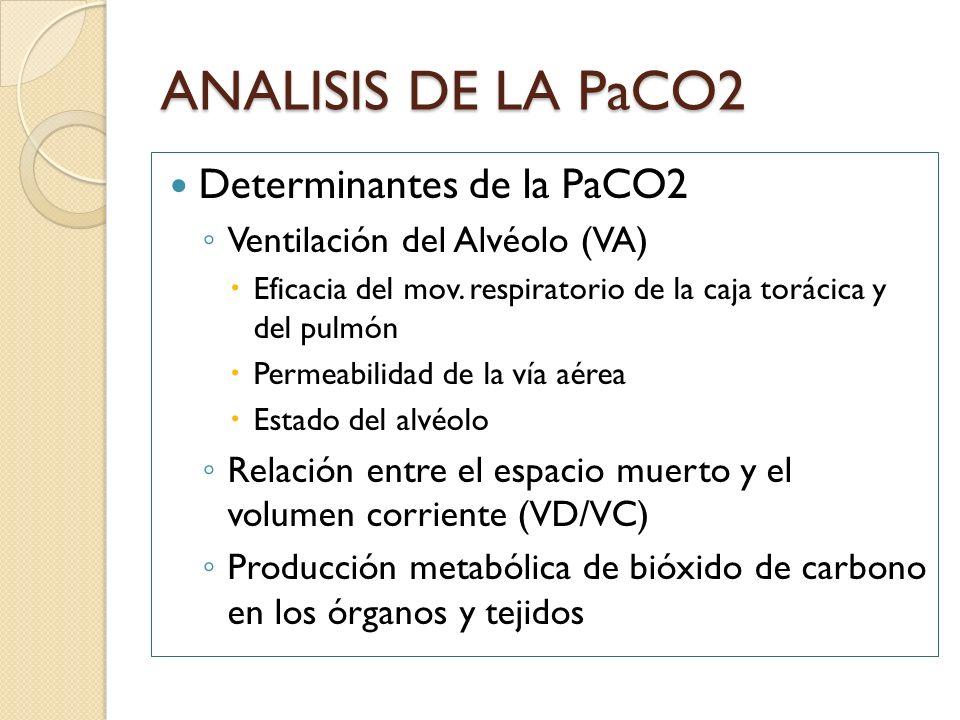 ANALISIS DE LA PaCO2 Determinantes de la PaCO2 Ventilación del Alvéolo (VA) Eficacia del mov. respiratorio de la caja torácica y del pulmón Permeabili