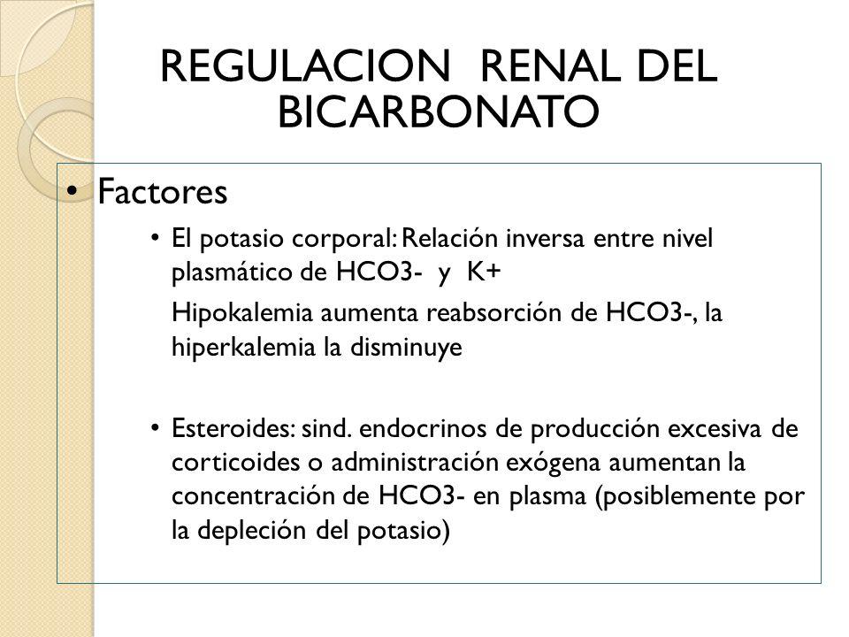 REGULACION RENAL DEL BICARBONATO Factores El potasio corporal: Relación inversa entre nivel plasmático de HCO3- y K+ Hipokalemia aumenta reabsorción d