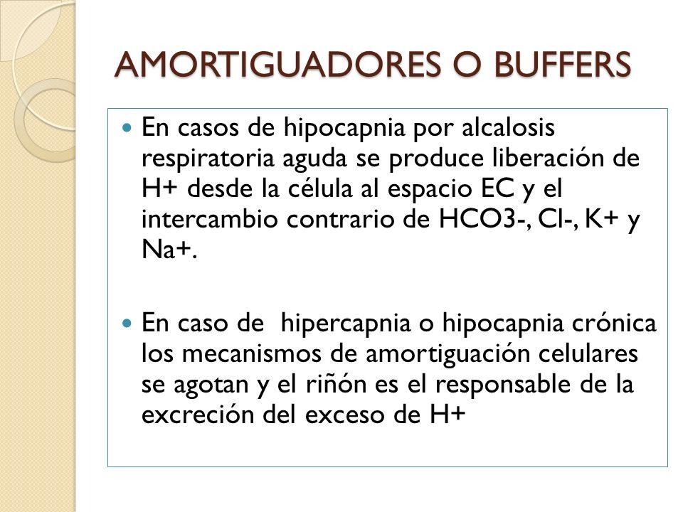 En casos de hipocapnia por alcalosis respiratoria aguda se produce liberación de H+ desde la célula al espacio EC y el intercambio contrario de HCO3-,