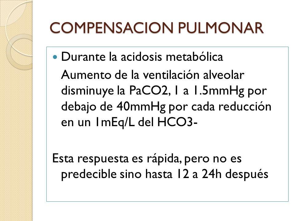 Durante la acidosis metabólica Aumento de la ventilación alveolar disminuye la PaCO2, 1 a 1.5mmHg por debajo de 40mmHg por cada reducción en un 1mEq/L