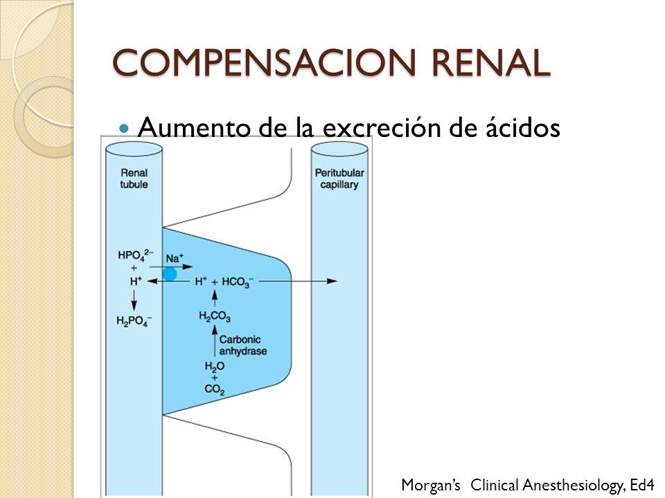 Aumento de la excreción de ácidos COMPENSACION RENAL Morgans Clinical Anesthesiology, Ed4