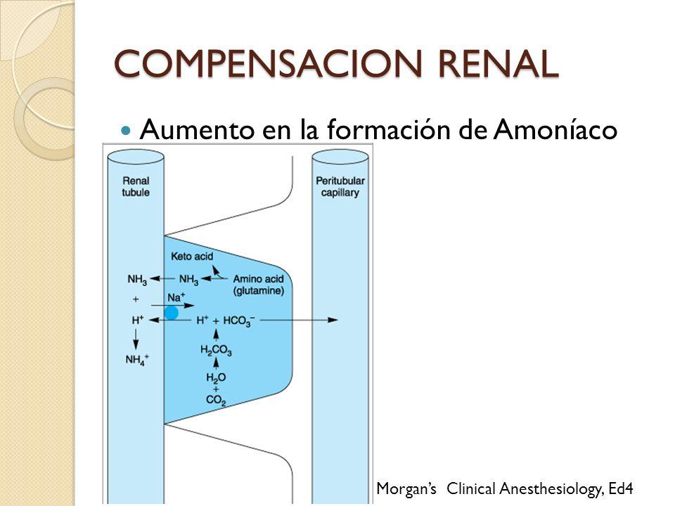 Aumento en la formación de Amoníaco COMPENSACION RENAL Morgans Clinical Anesthesiology, Ed4
