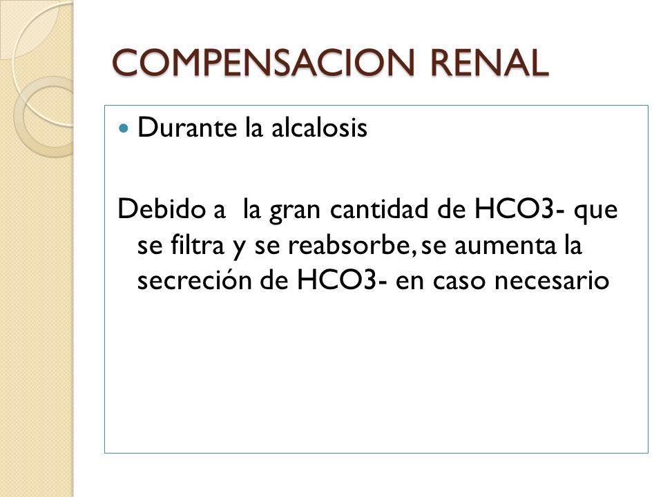Durante la alcalosis Debido a la gran cantidad de HCO3- que se filtra y se reabsorbe, se aumenta la secreción de HCO3- en caso necesario COMPENSACION