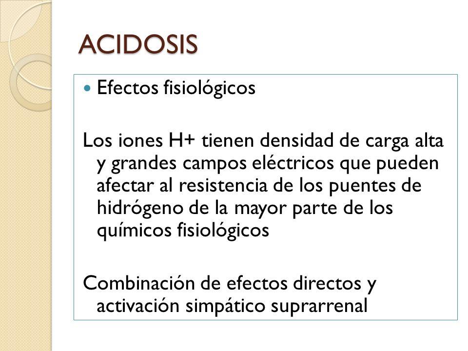 ACIDOSIS Efectos fisiológicos Los iones H+ tienen densidad de carga alta y grandes campos eléctricos que pueden afectar al resistencia de los puentes