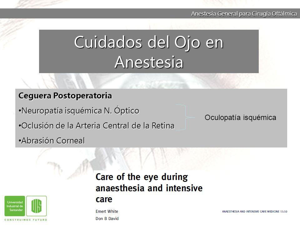 Anestesia General para Cirugía Oftálmica Ceguera Postoperatoria Neuropatía isquémica N. Óptico Neuropatía isquémica N. Óptico Oclusión de la Arteria C
