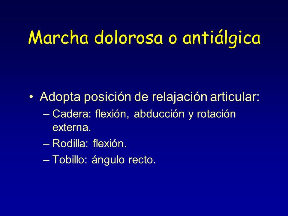 Marcha dolorosa o antiálgica Adopta posición de relajación articular: –Cadera: flexión, abducción y rotación externa. –Rodilla: flexión. –Tobillo: áng