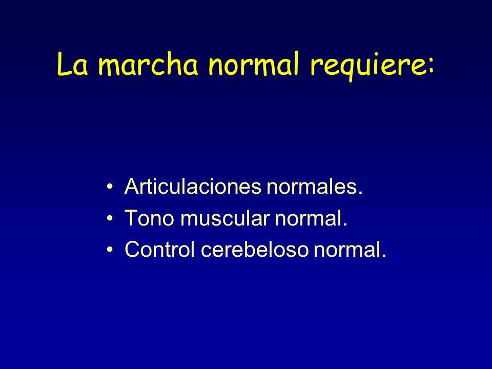 La marcha normal requiere: Articulaciones normales. Tono muscular normal. Control cerebeloso normal.